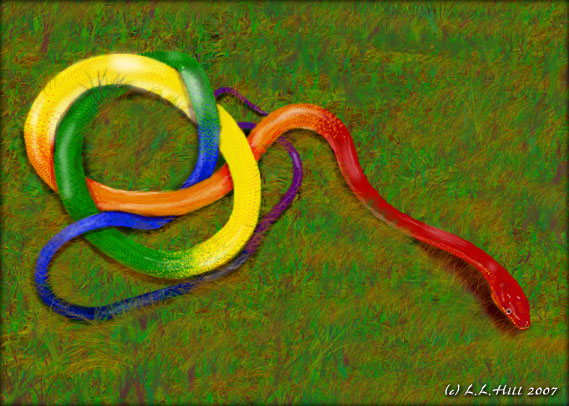 Real Rainbow Snake | www.pixshark.com - Images Galleries ...