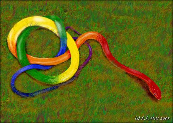 The Rainbow Serpent Colorful Snakes Rainbow Serpent Rainbow Snake