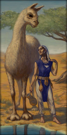 A Shendar Woman and her Aj'Nuvic